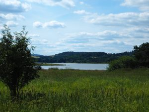 Kovčínský rybník